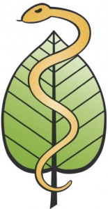 a-logo-gold